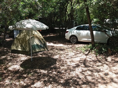 2019-06-06 13-37-26 çubacak forest camp